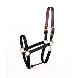 Perri's HALTER NYLON W/BREAK AWAY PERRI'S