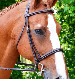 BLACK OAK Bridle Aster w/ threaded headstall