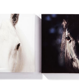 Giftcraft Canvas Prints, Set of 2 Horses