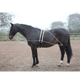 SHIRES Lunging Aid - One size