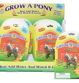 Grow a Pony