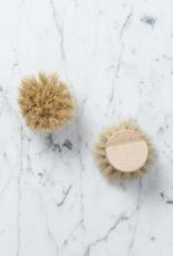 Iris Hantverk Swedish Everyday Dishbrush Replacement Head - Soft Bristle