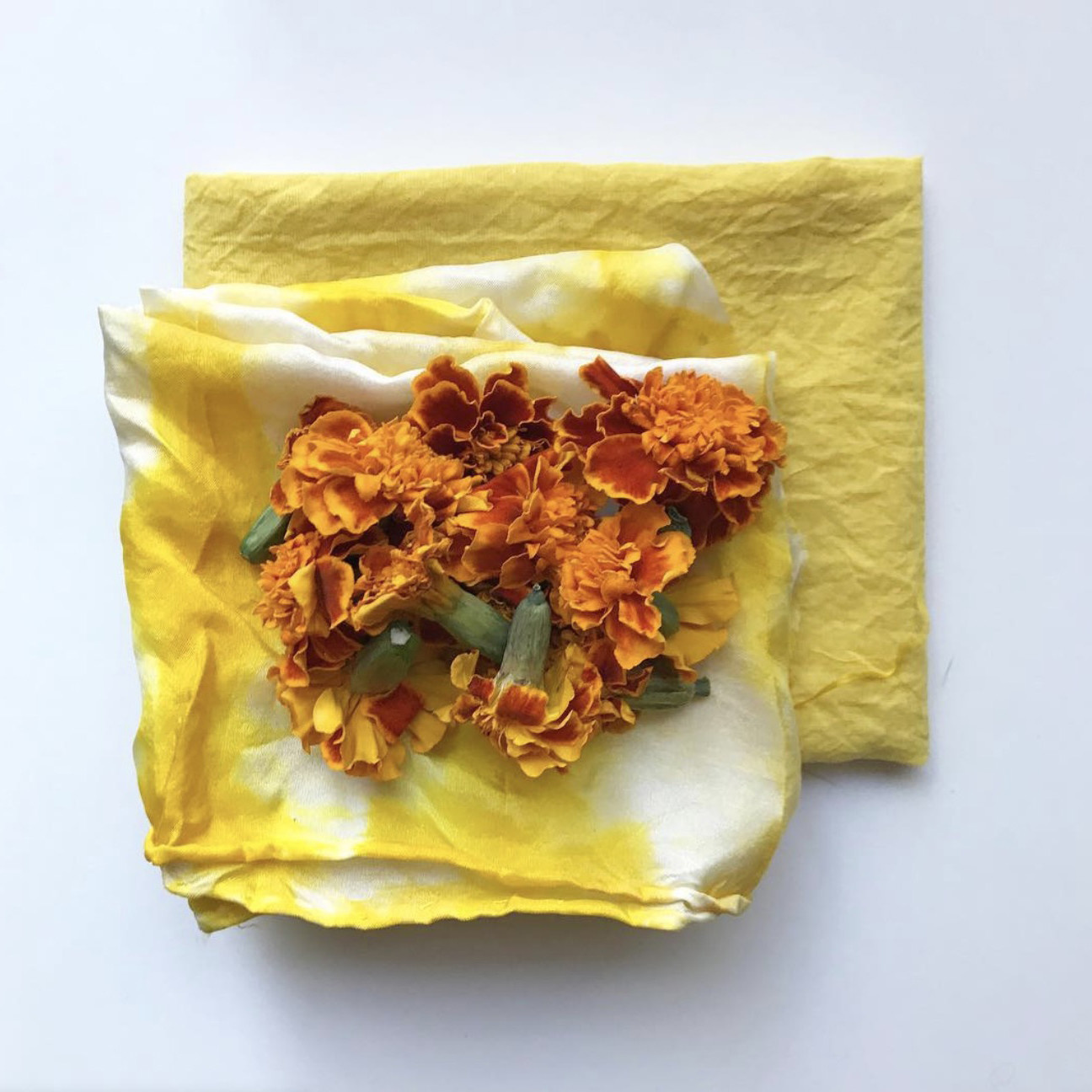 Northern Dyer Northern Dyer Grow Your Own Natural Plant Dye Kit - Marigold Flowers - Yellow/Orange