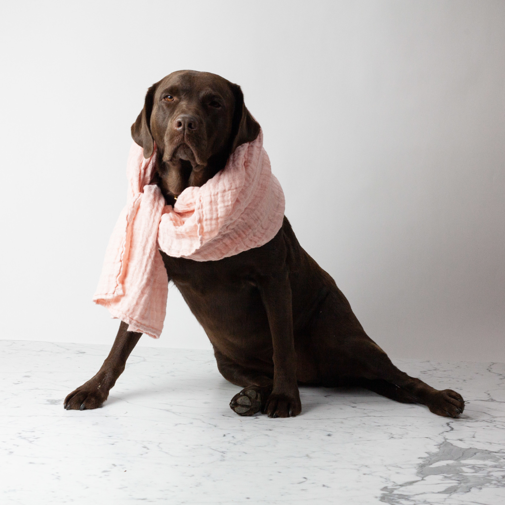 """Washed French Linen Gauze Scarf - Piglet Pink - 24 x 70"""""""