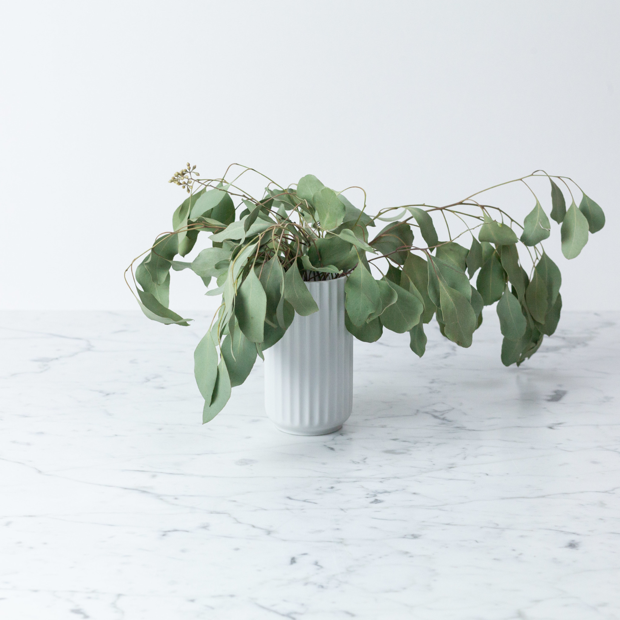 Lyngby Porcelain Lyngby Fluted Porcelain Vase - 12 cm - Glossy White