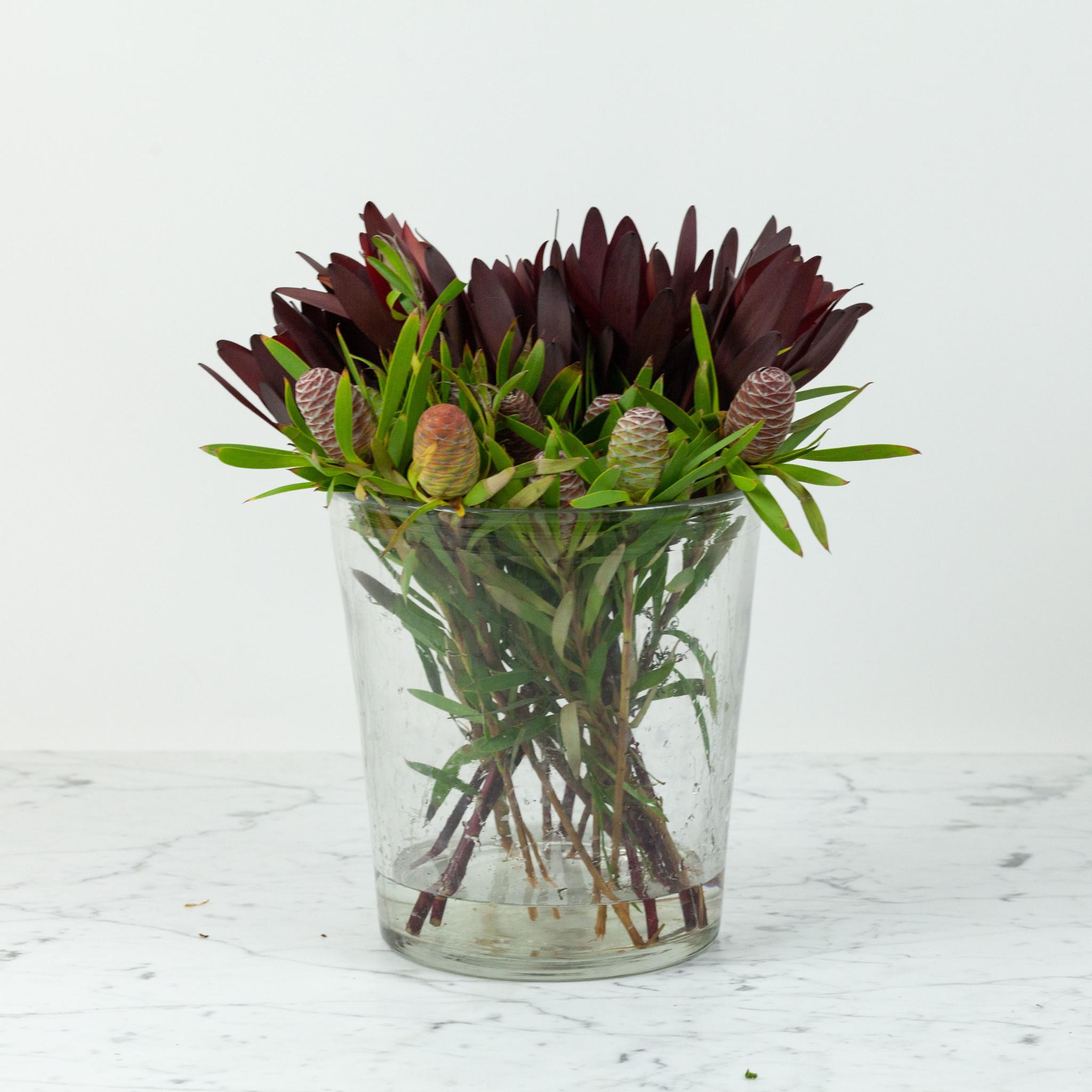 "Henry Dean Belgian Handblown Tapered Elizabeth Vase - Clear Glass - 9.5"""