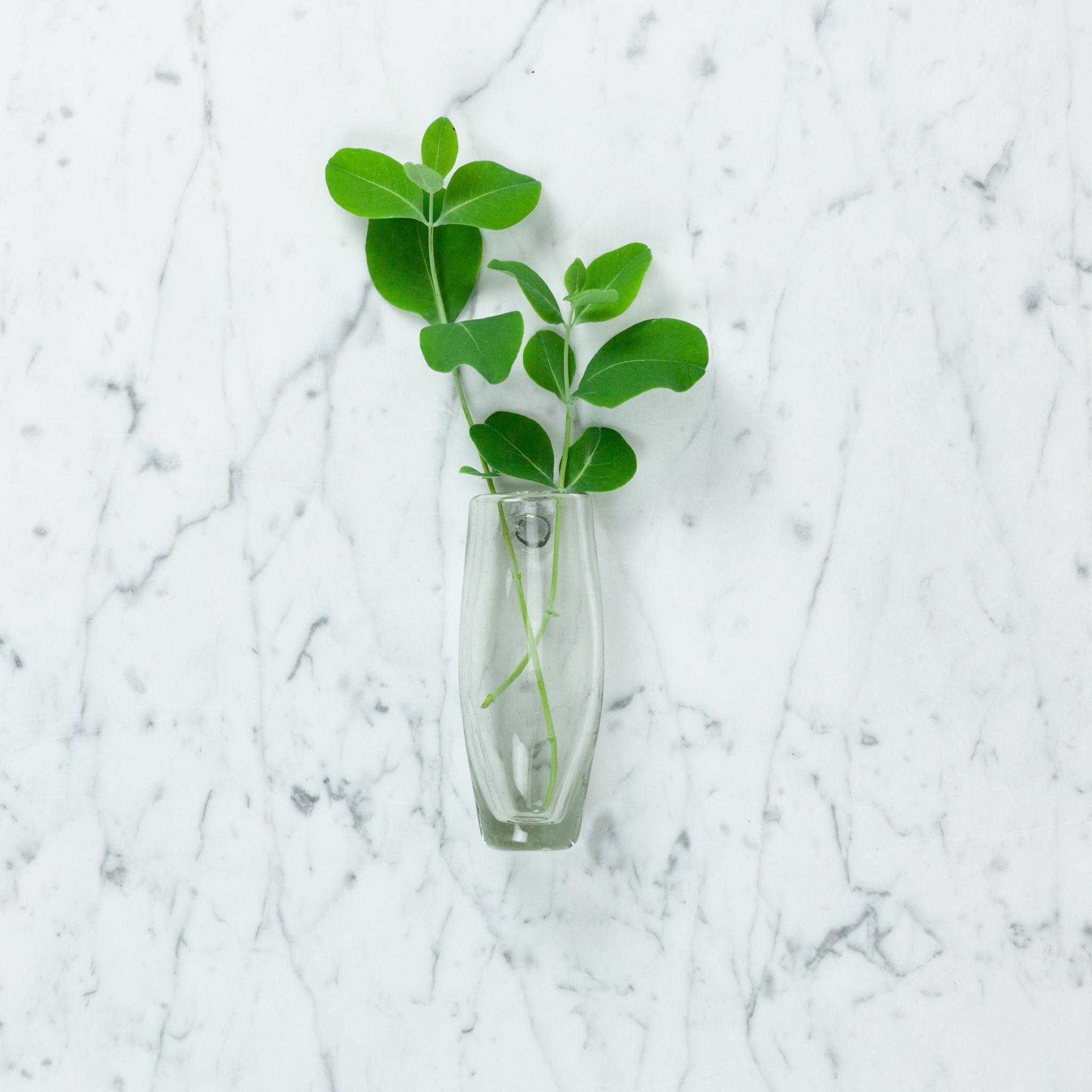 "Handblown Mexican Glass Wall Vase - 5"""