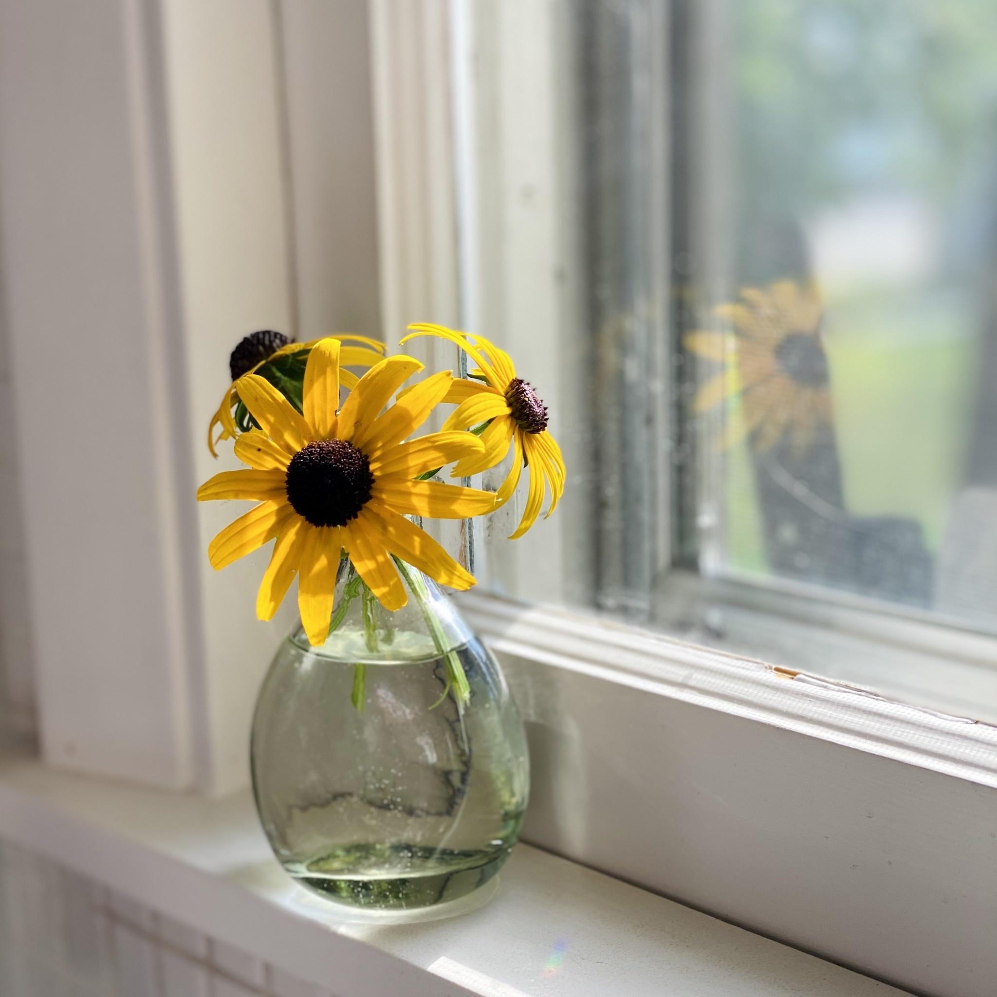"Handblown Curved Glass Bud Vase - 4 1/2"""