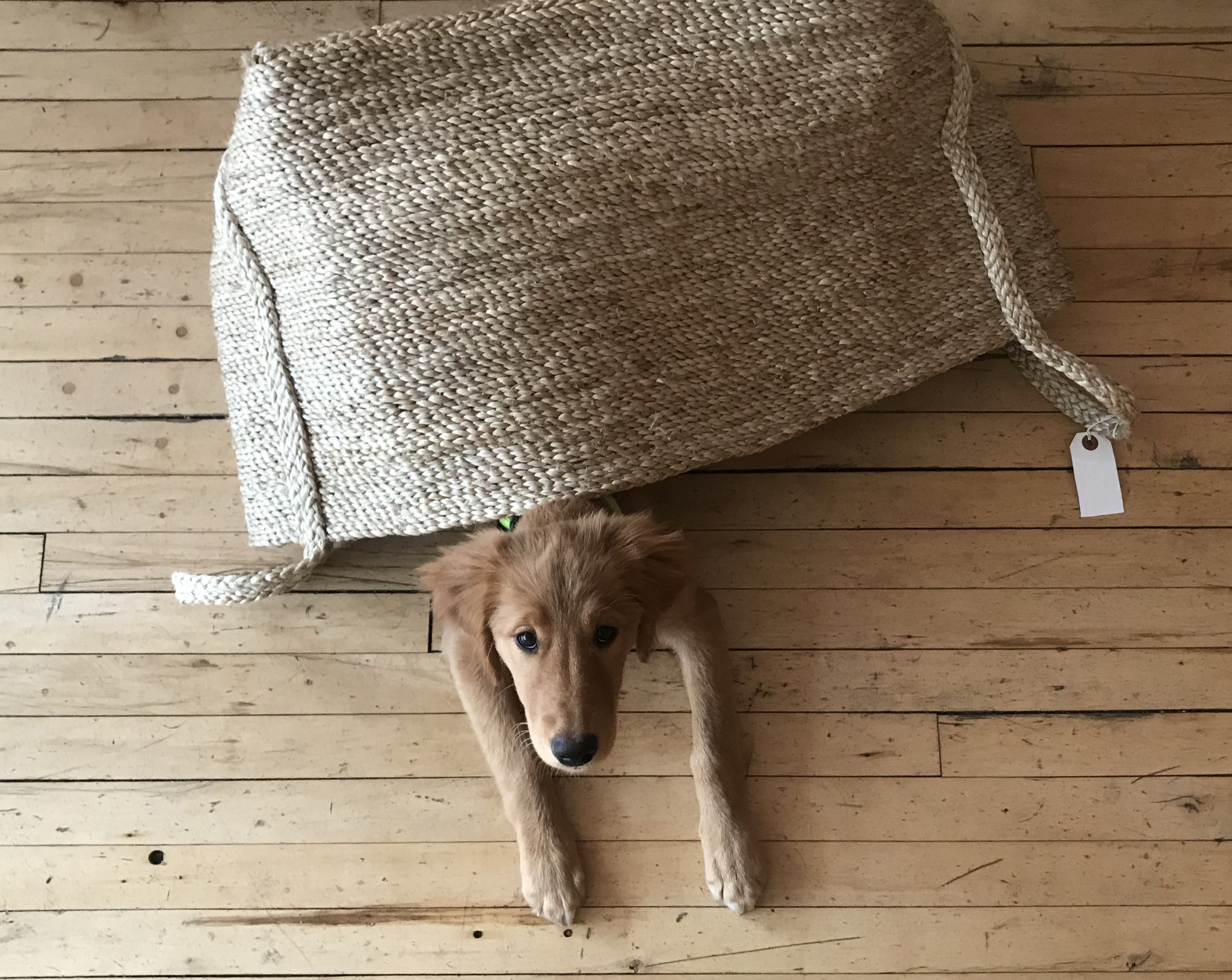 How to: Reshape A Basket