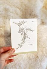 Blackbird Letterpress Letterpress Peace on Earth Juniper Card