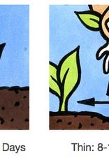 Seed Savers Exchange Flower Seeds - California Poppy Mix