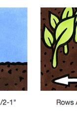 Seed Savers Exchange Pea Seeds - Swenson Swedish