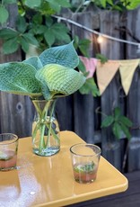 Handblown Mexican Cone Rock Glass