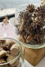 "Iris Hantverk Swedish Stiff Brush with Handle for Pots + Pans - Union Blend - 5"""