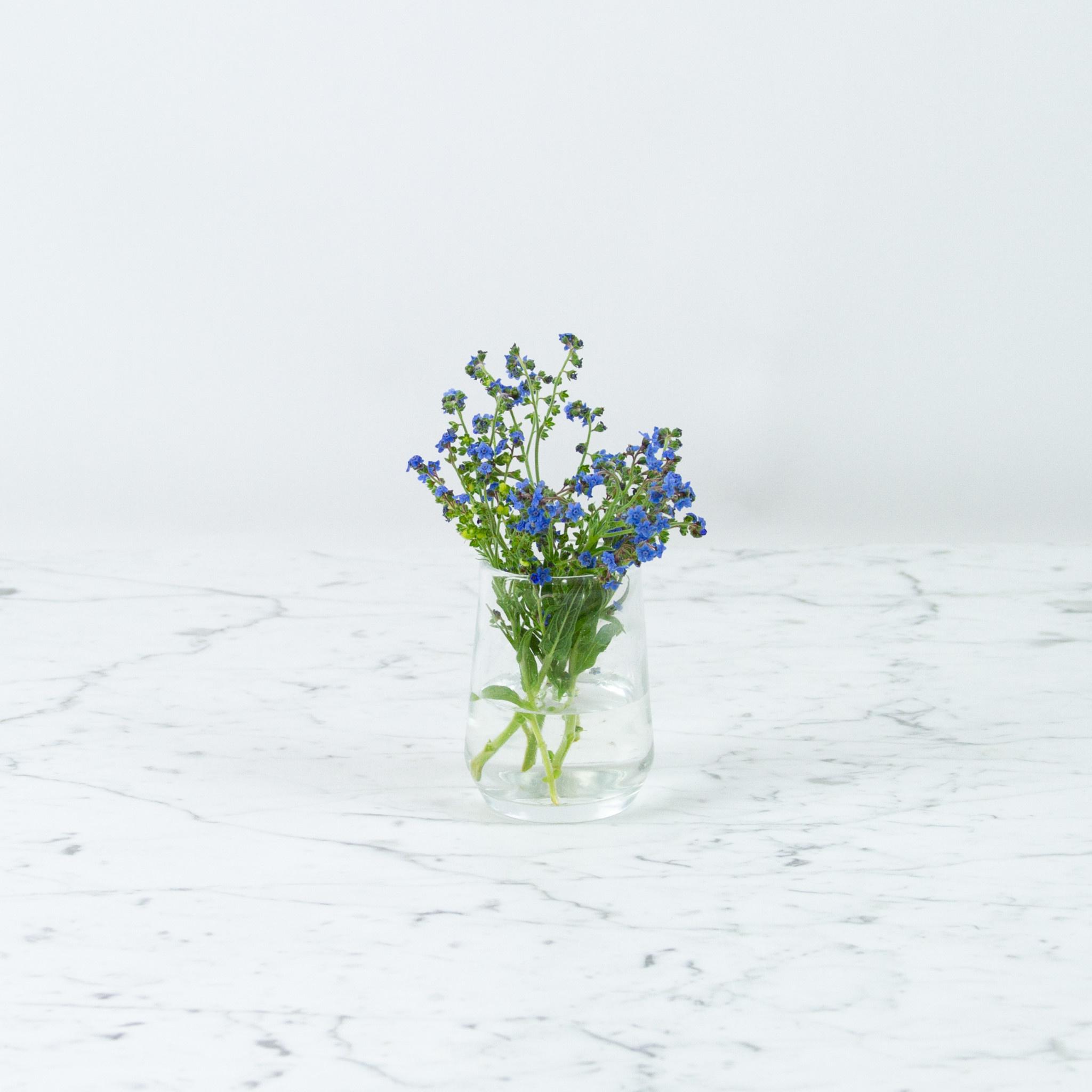 Henry Dean Handblown Clementine Vase - Small