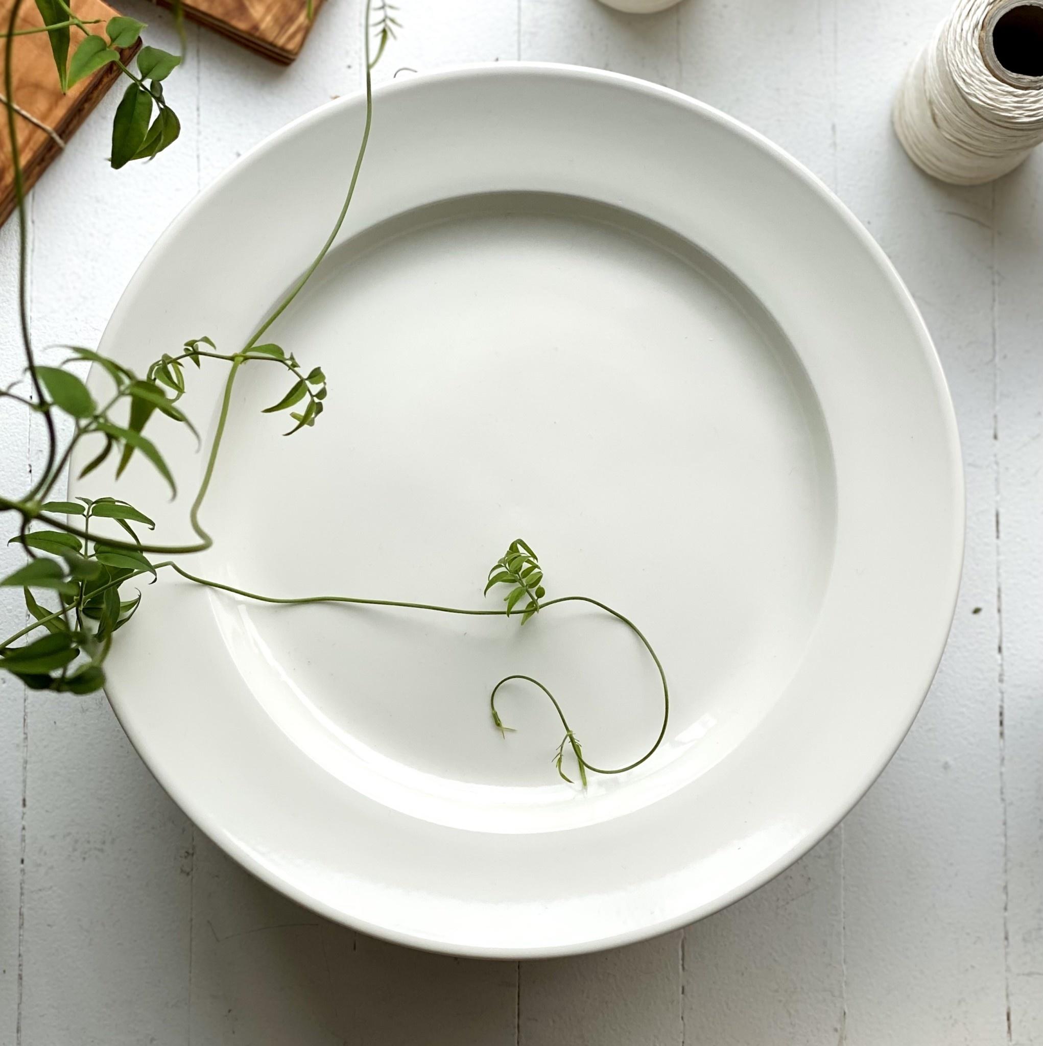 """John Julian John Julian Plain Porcelain Dinner Plate - 10 1/2"""""""