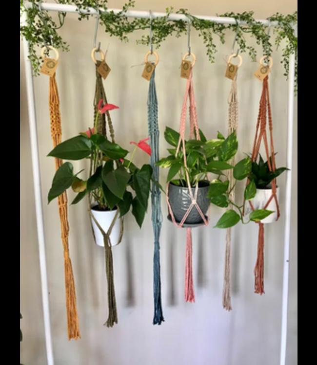 Earthly Basics Plant Hanger- Wheat
