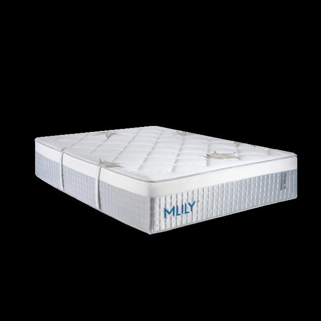 Mlily® Mprove 3.0 CBD Series     15″ Plush Hybrid