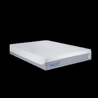 Mlily® WellFlex 1.0 12″ Memory Foam Firm