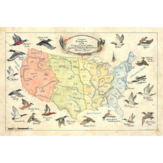 New World Cartography Ducks of the US by New World Cartography - Limited Edition Giclee
