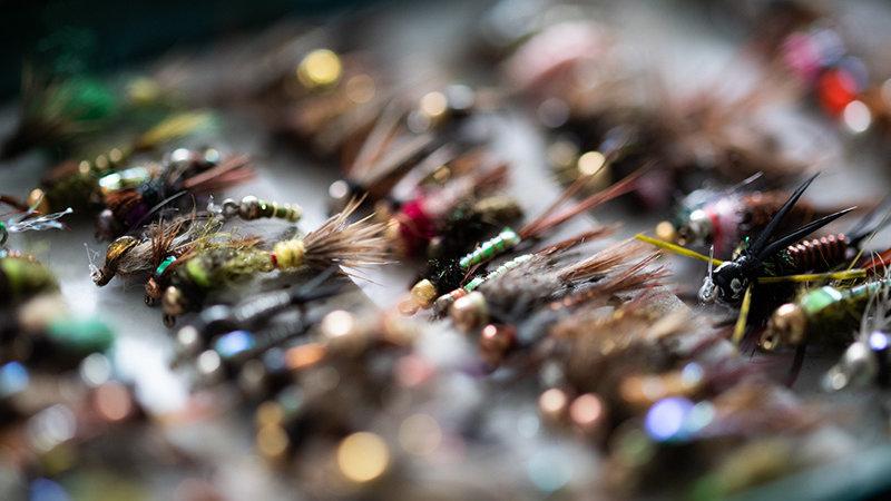 Top Summer Fishing Flies for Wild Water