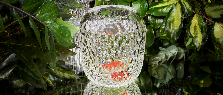 Saint-Louis Folia Small clear vase