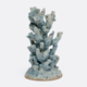 Niel Coral Object