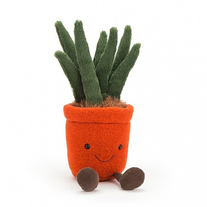 Amuseable Yucca Medium