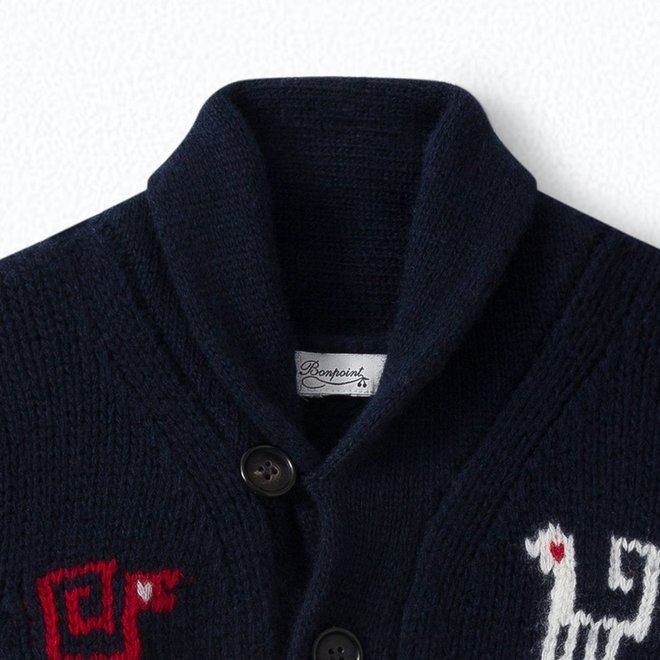 Boys' Jacquard Wool Cardigan Navy