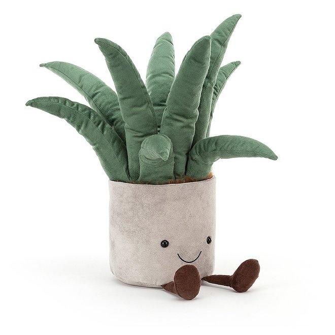 Big Potted Plant Aloe Vera