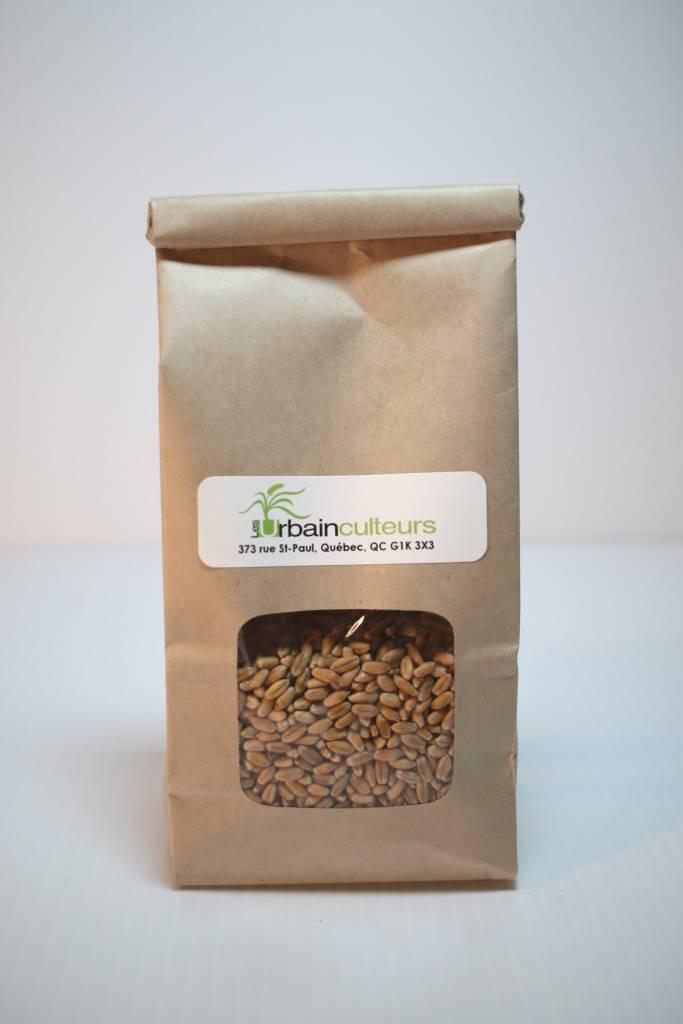 Mumm's Herbe de blé 250g (USA)
