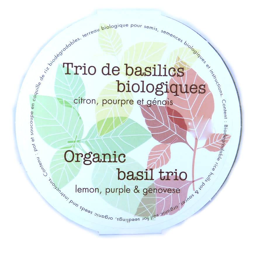 Mano Verde Trio de basilics biologiques