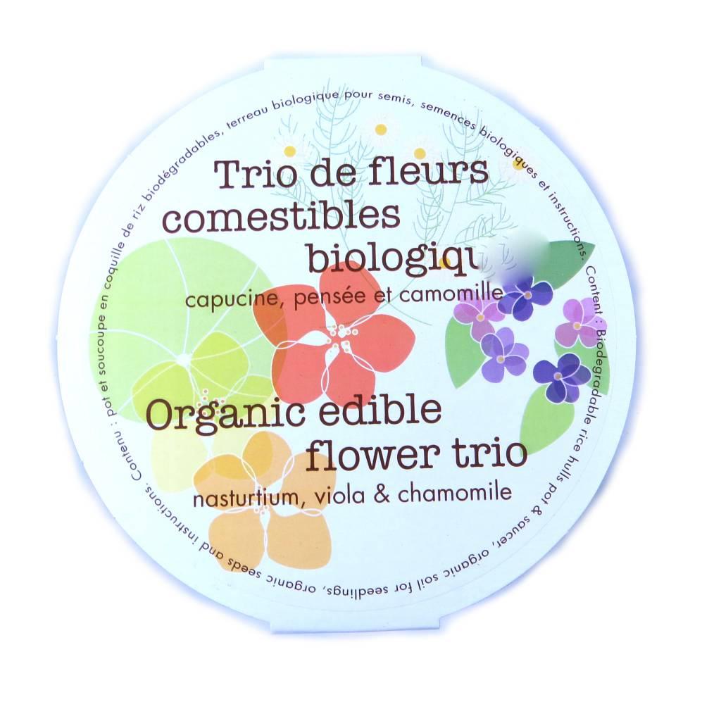 Mano Verde Trio de fleurs comestibles biologiques