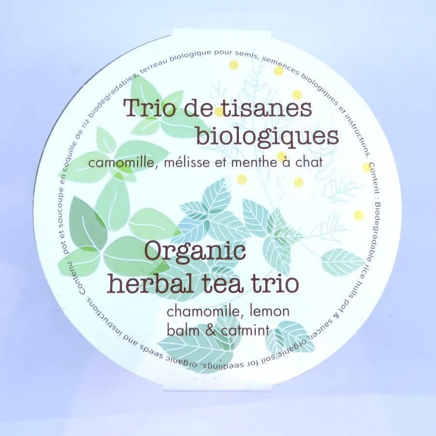 Mano Verde Trio de tisanes biologiques