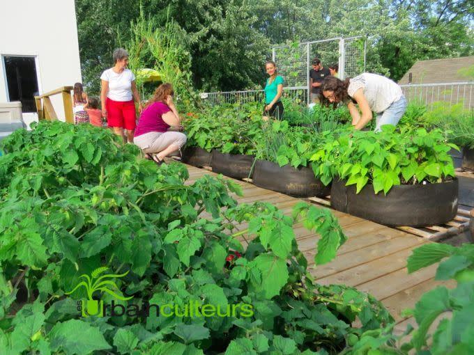 Smart Pot Jardin instantané JUNIOR