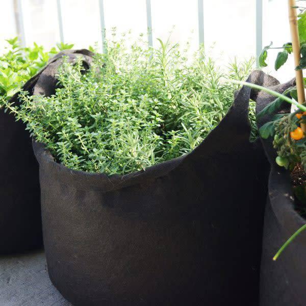 Smart Pot SmartPot 7 gallons