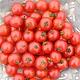 Jardin de l'Écoumène Tomate cerise Sub-arctic