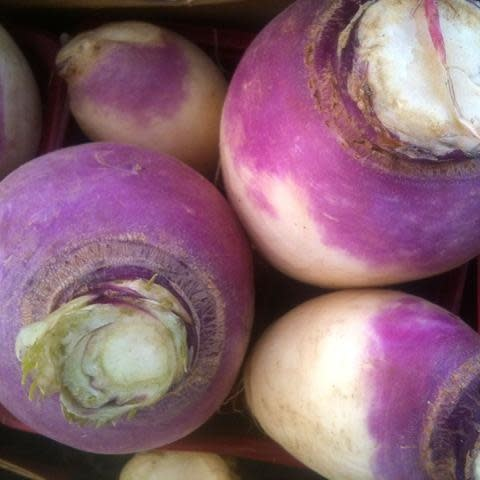 Navet blanc à collet violet