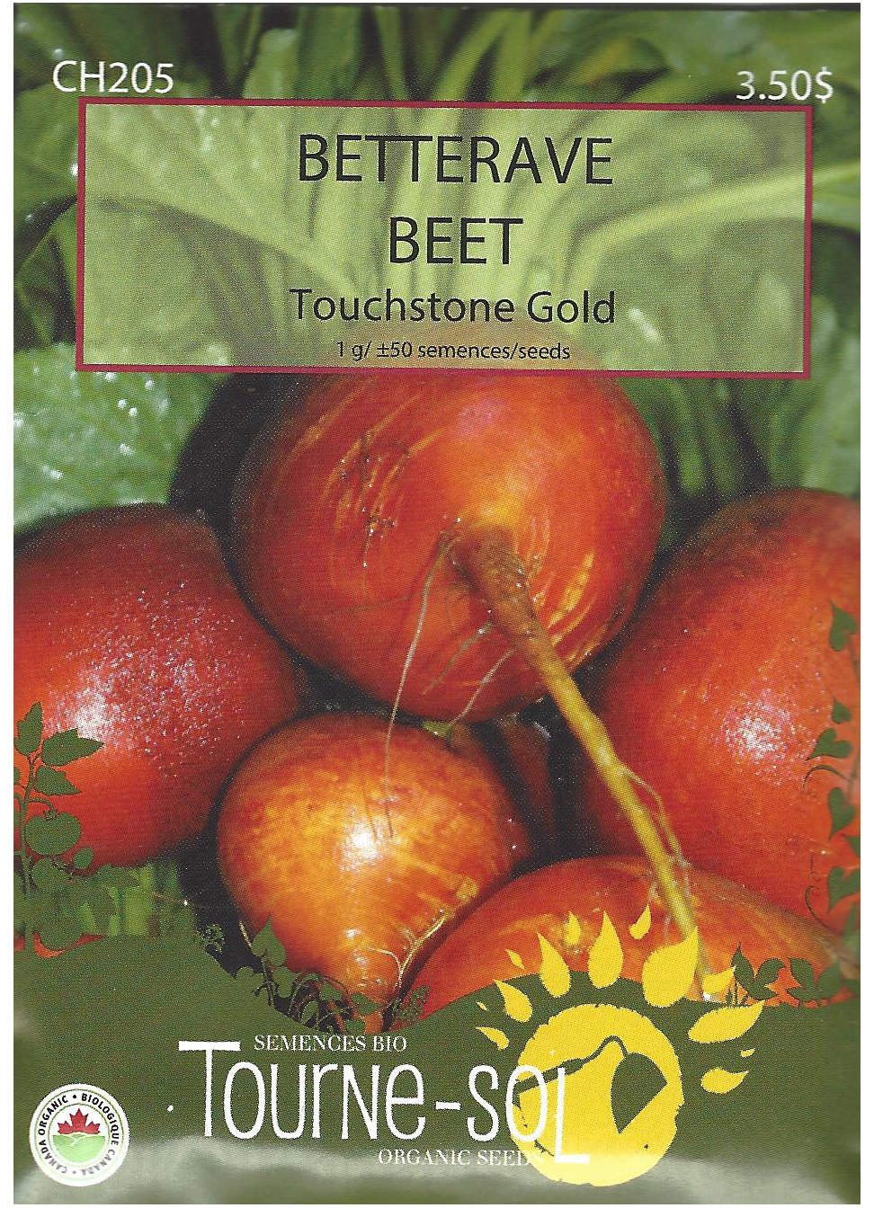 Betterave Touchstone Gold