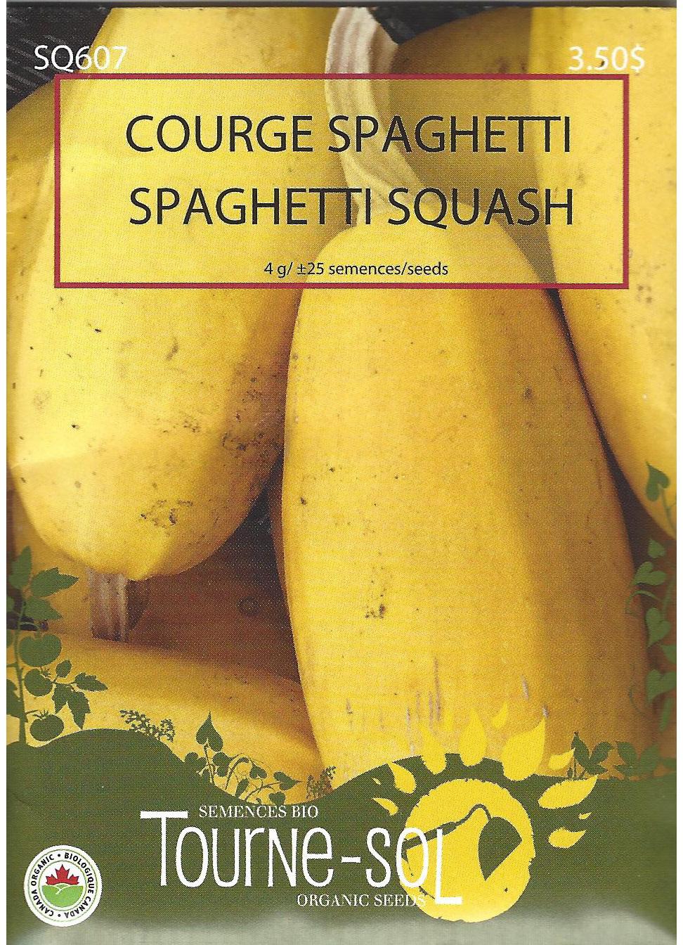 Semence Tourne-sol Courge Spaghetti
