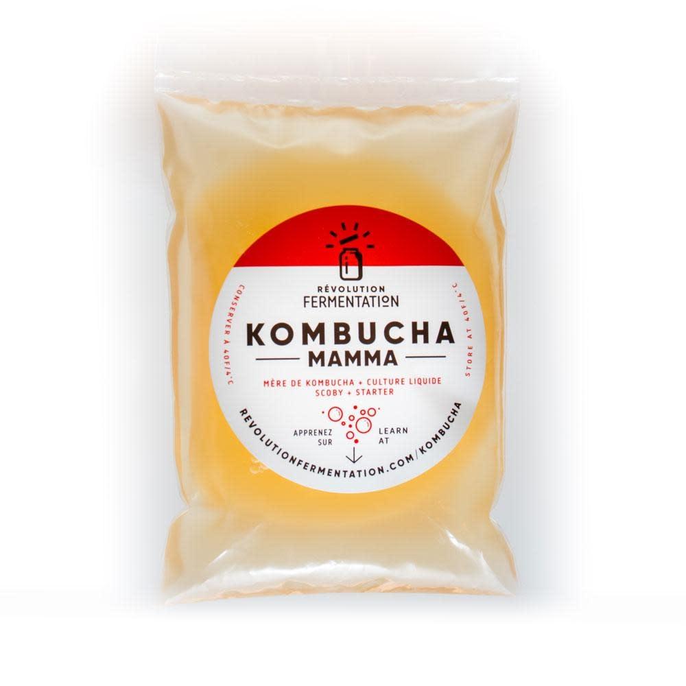 Révolution Fermentation Mamma kombucha