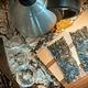 Révolution Fermentation Kit complet pour créer son kombucha (sans Mamma) - Nature