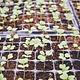 Formation 21 février - Design de votre jardin urbain et planification des semis