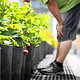 Formation 10 juillet - Routine d'entretien pour un jardin en santé