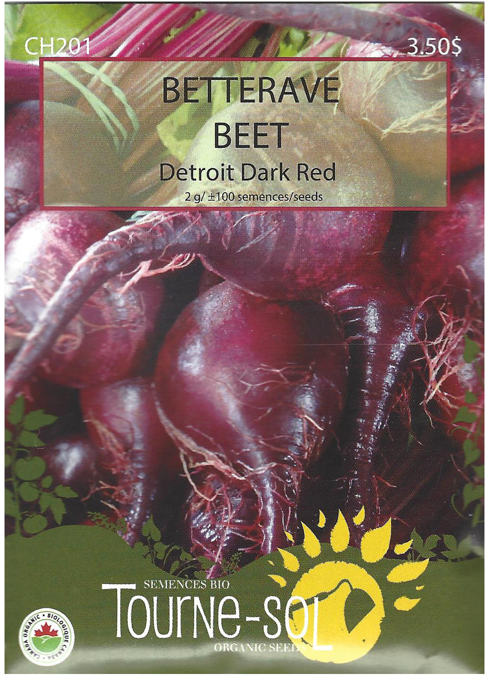 Semence Tourne-sol Betterave Detroit Dark Red