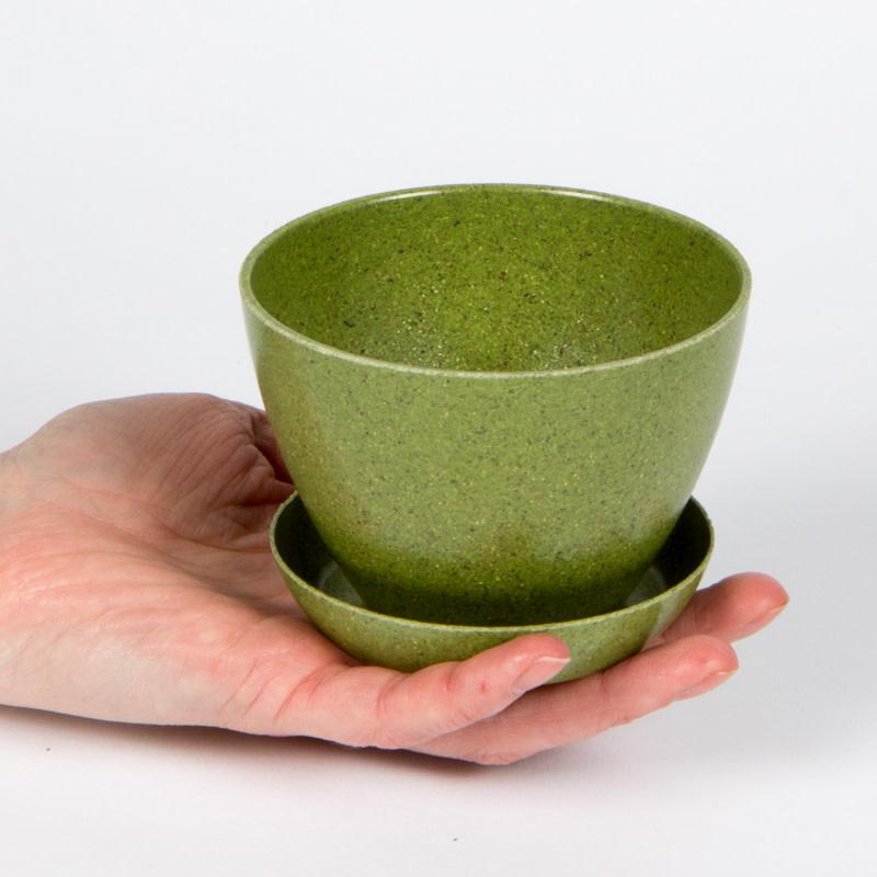 Mano Verde Minipot - Ciboulette