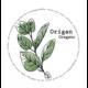 Mano Verde Minipot - Origan Grec