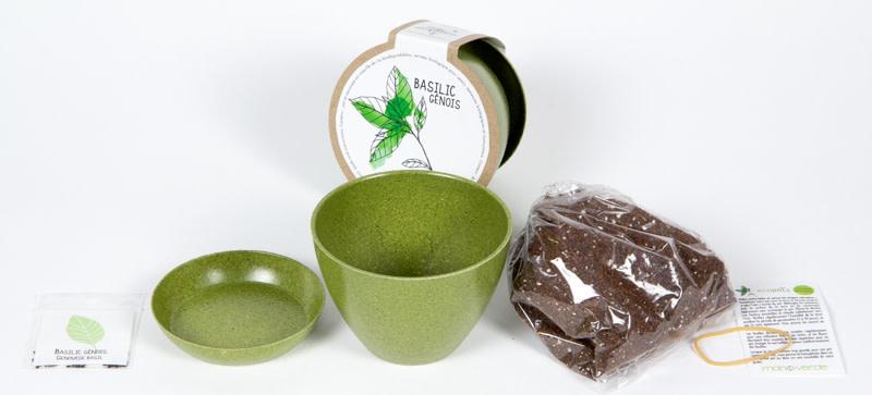 Mano Verde Minipot - Pensées comestibles
