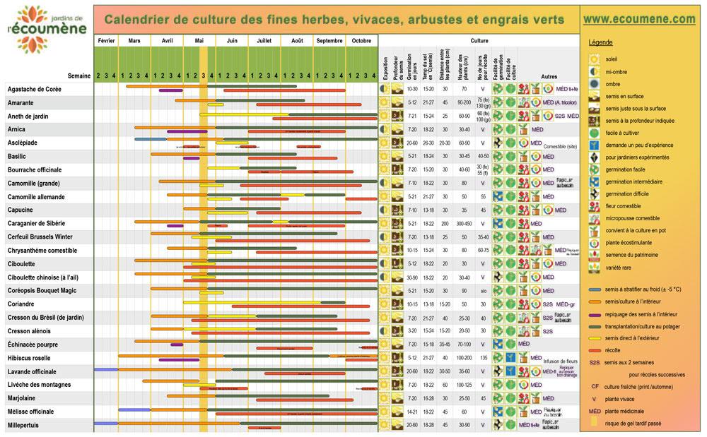 Jardin de l'Écoumène Calendrier de culture - Fines herbes