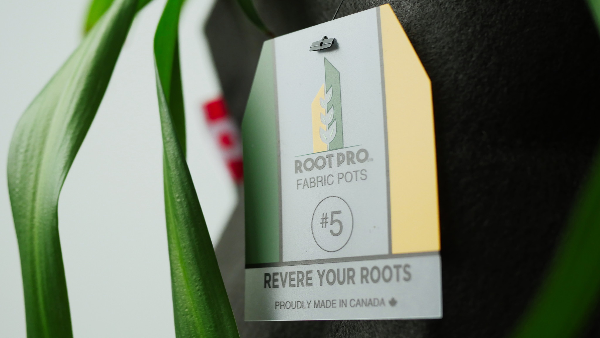 Root Pro Root Pro 5 gallons